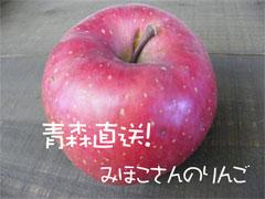 みほこさんの青森りんご